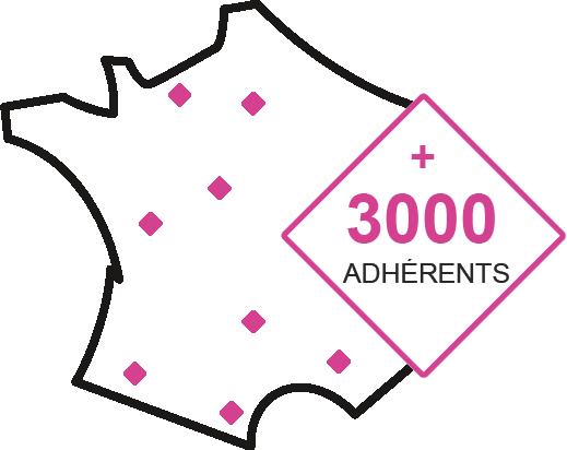 3000 adh (france)_Plan de travail 1
